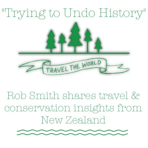 Armchair-Travel to New Zealand THIS WEEK!